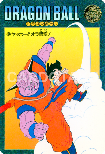 DRAGON BALL Z Visual Adventure 80