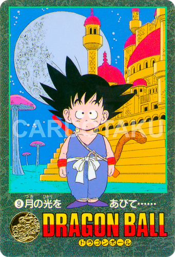 DRAGON BALL Visual Adventure 9
