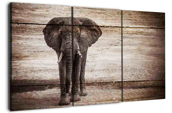 The meaning of Elephant canvas wall art is all explained in here