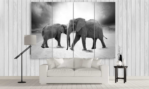 two elephants in black and white canvas wall art