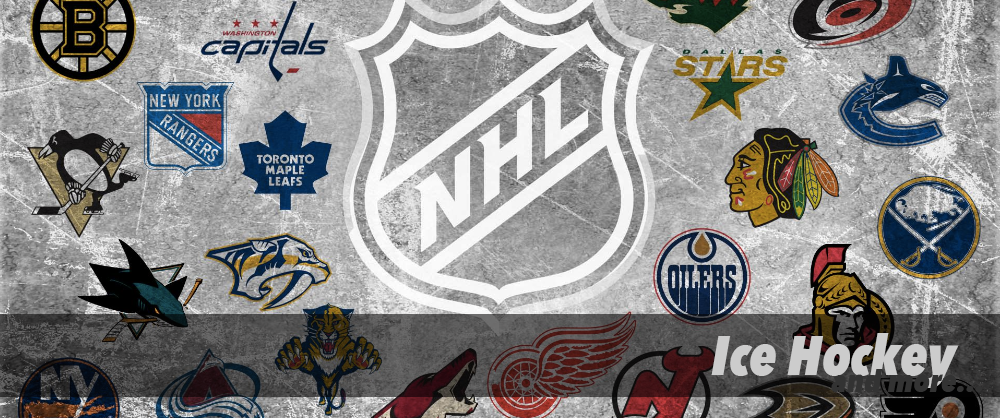 NHL Ice Hockey | Sports Canvas Wall Art | Panelwallart.com