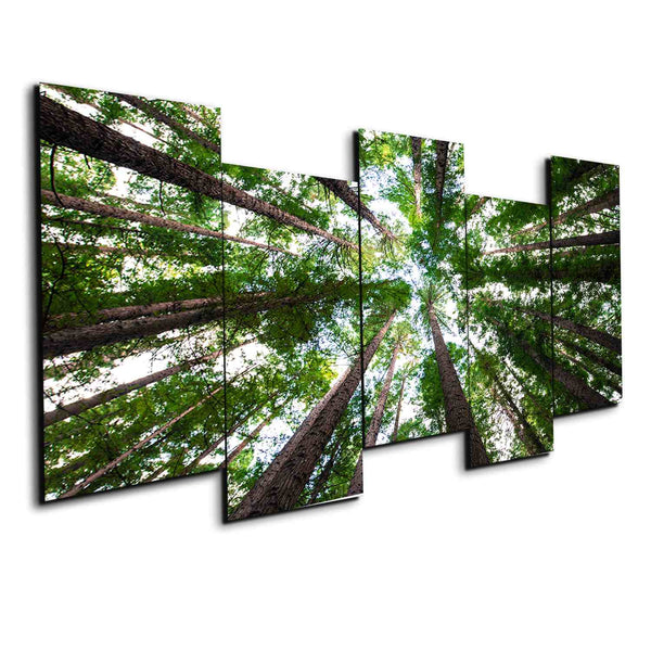 5 panel Tree Forest canvas print framed wall art by panelwallart.com