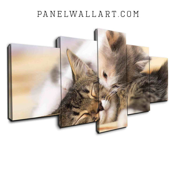 5 panel canvas wall art kissing kitten lying on bed so cute