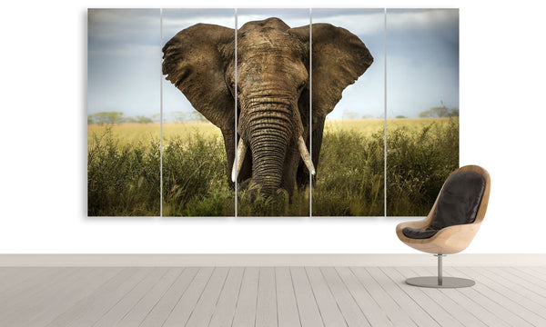The Spirit of an Elephant | Animals Panel Wall Art by panelwallart.com