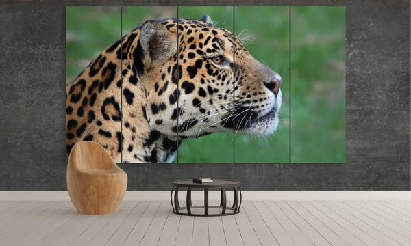 Leopard in the Wild | Animals Panel Wall Art by panelwallart.com