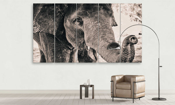 The Elephant | Animals Panel Wall Art by panelwallart.com
