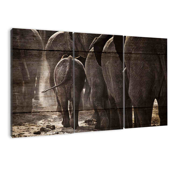 amazon.com animals wall art prints of elephants by albyden art sold at panelwallart.com