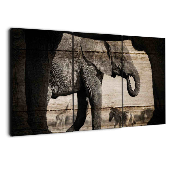 albyden art - wall art canvas elephants sold at panelwallart.com