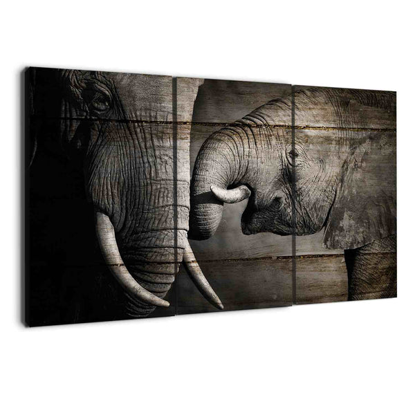 elephant prints - albyden art - wall art canvas sold at panelwallart.com