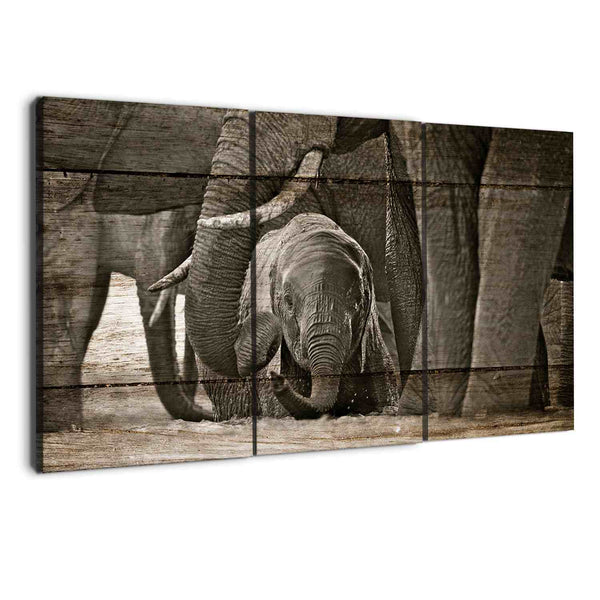 albyden art - elephants wall art canvas art prints sold at panelwallart.com