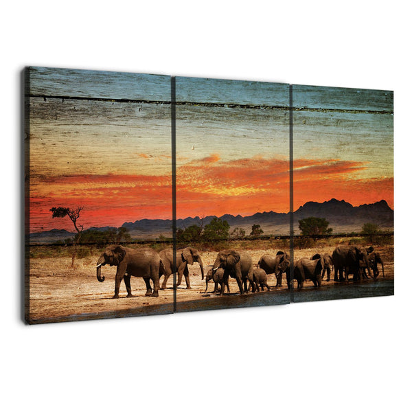 amazon.com albyden art - elephants canvas art prints sold at panelwallart.com