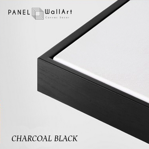 charcoal blank canvas floater frames - panelwallart.com | Panel Wall Art