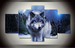 Wolf In Winter - Wild Animals