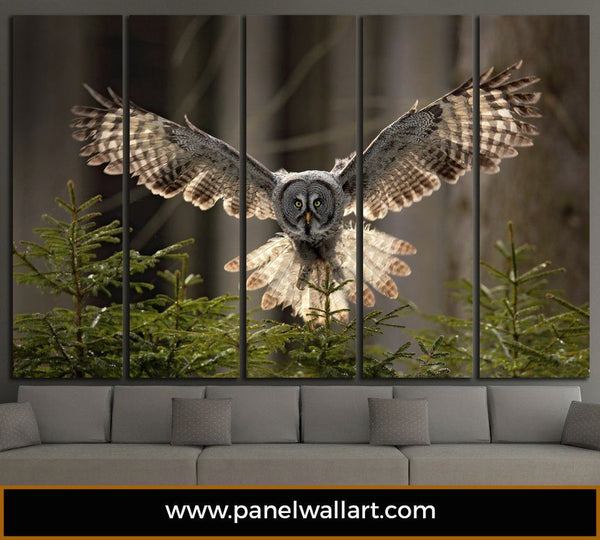 5 Panel Flying Owl | Multi Panel Animals Canvas Prints | Panelwallart.com
