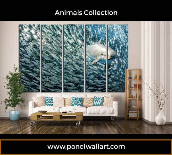 5 panel dolphin and fish canvas wall art print by panelwallart.com