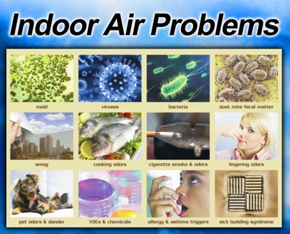 Different Types Of Indoor Contaminants