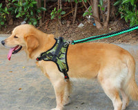 Chest and Back Adjustable Dog Harness Suit