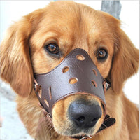 Anti-Biting Mouth Cover Mask Muzzle for Dogs