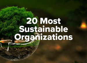 20 Most influential and Sustainable Organizations