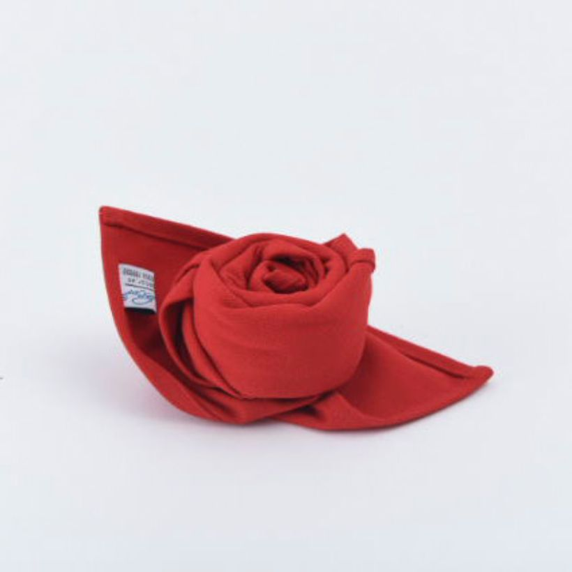 Khăn Ăn Bright Red Canvas Napkin 45x45cm (Red)