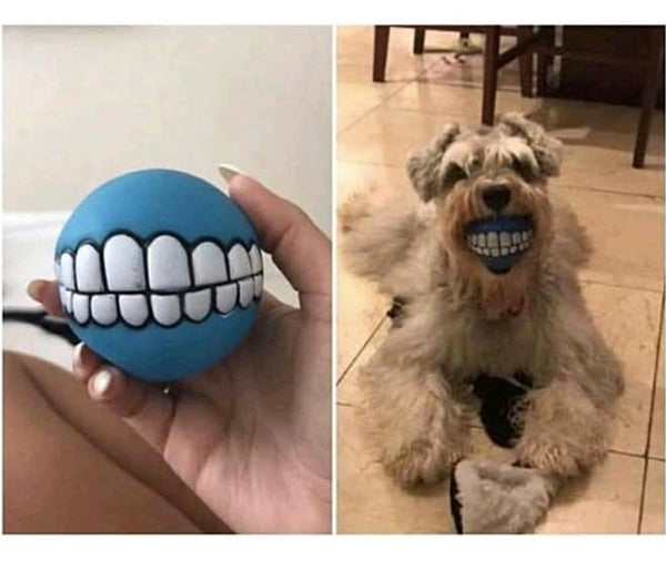 Dog/Pet Teeth Print Fetch Ball Toy