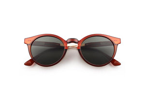 Eazy 2.0 Sunglasses in Brown Transparent