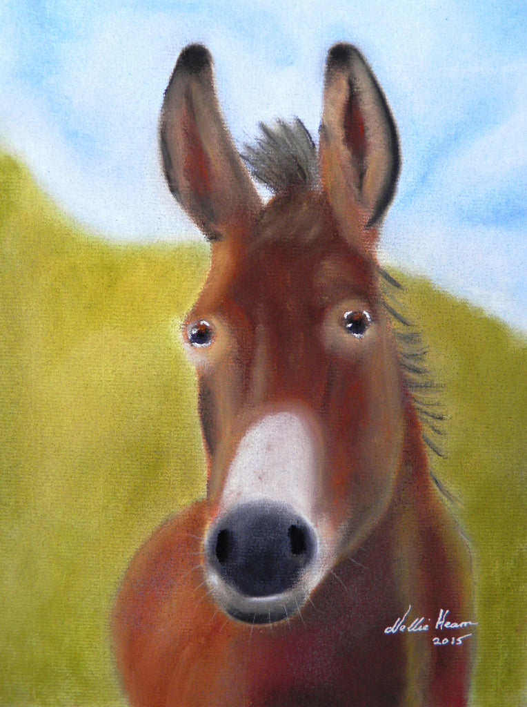 Ned - original pastel (framed)