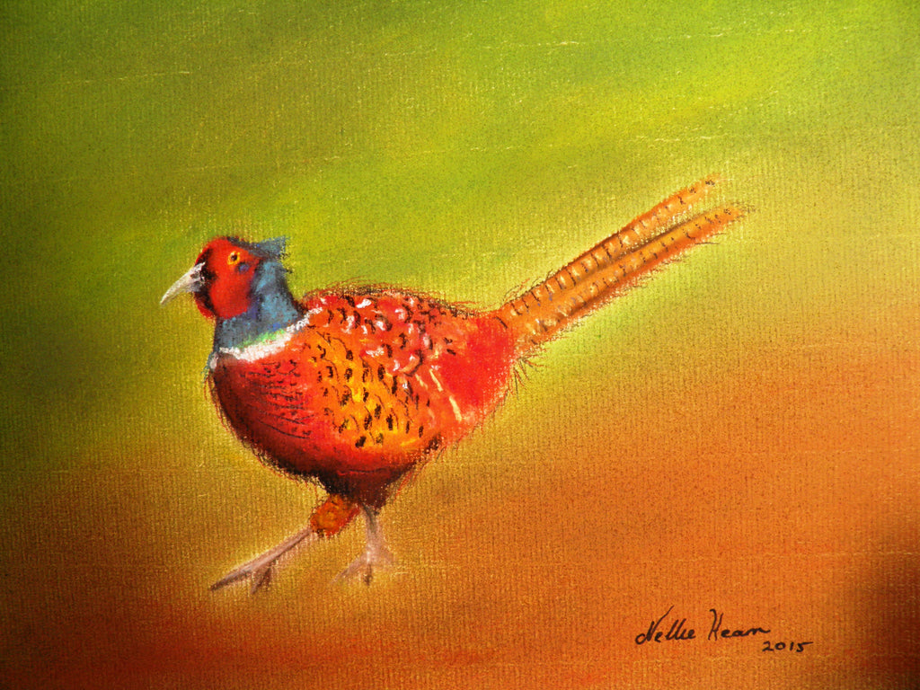 Featherhead Pheasant - limited edition