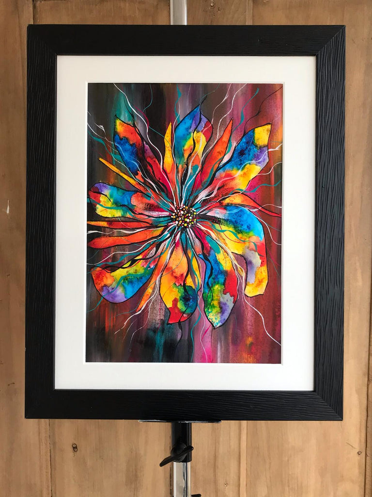 Rainbow daisy - limited edition