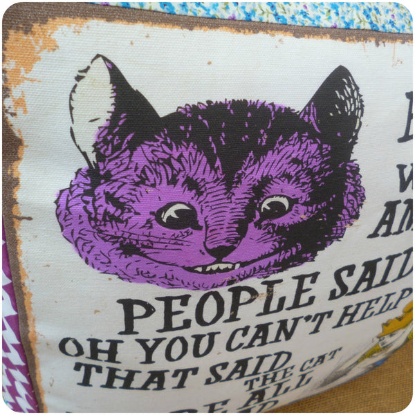 Alice in Wonderland Pillow, Cheshire Cat Close Up
