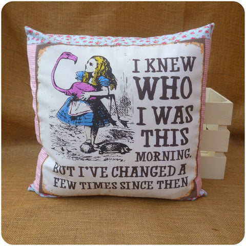 Alice in Wonderland Flamingo Cushion Front, Illustration and Alice quote bordered with blue floral and pink gingham fabric