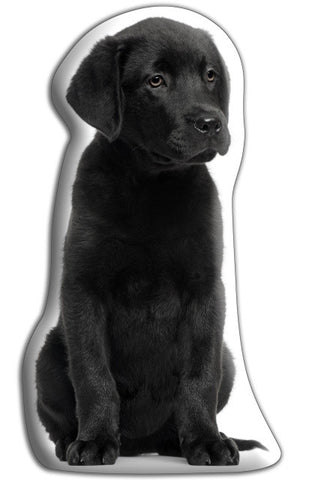 Black Labrador Adorable Cushion