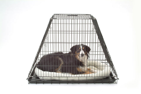 Top Quality Car Dog Cage