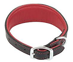 Outhwaites Red and Black Padded Greyhound Collar