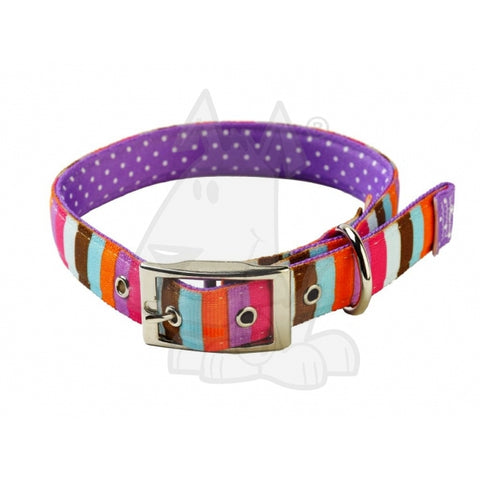 Yellow Dog multi coloured collar and lead