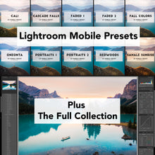 Full Collection (30 presets) + Lightroom Mobile
