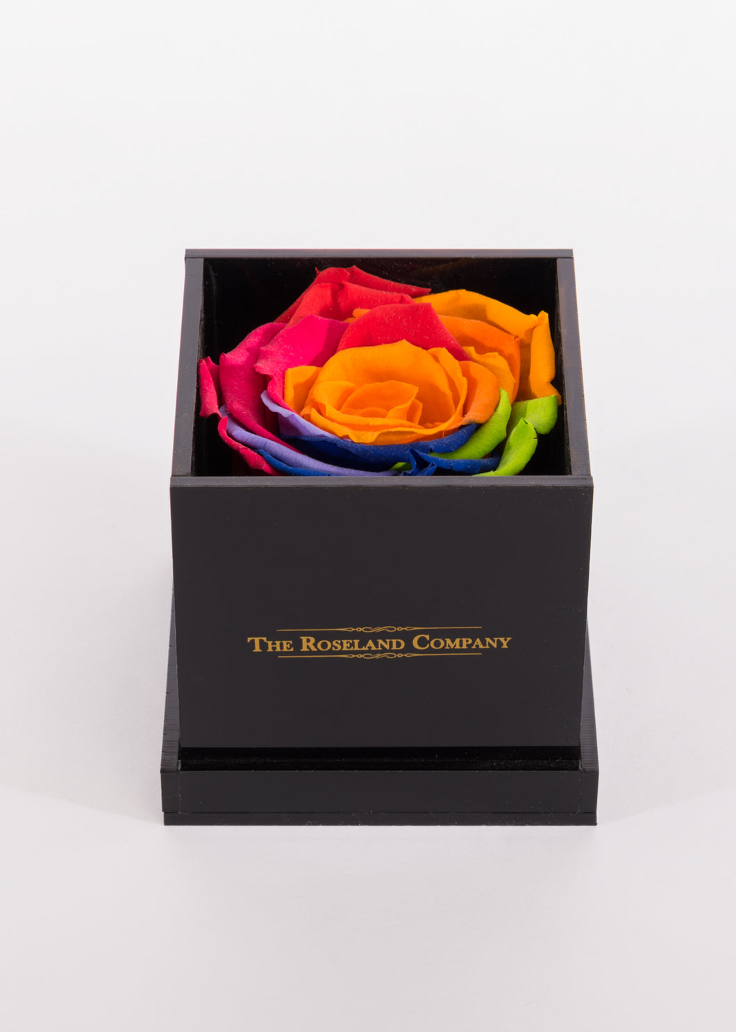 BLACK Small Cube Box with RAINBOW Eternity Rose