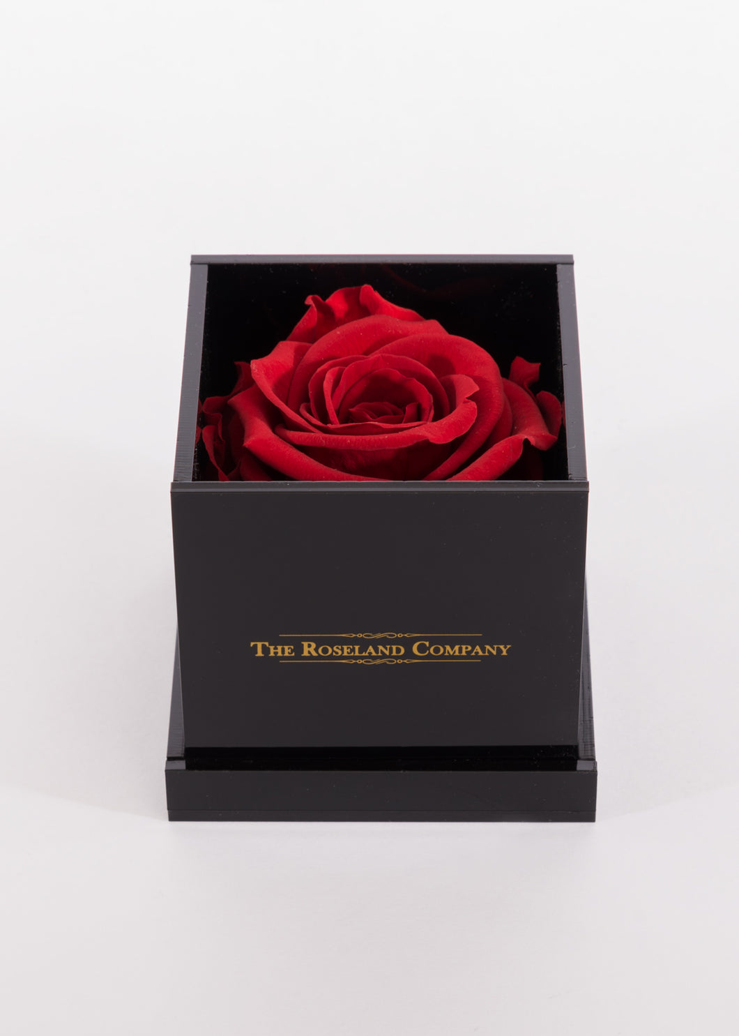 BLACK Small Cube Box with RED Eternity Rose