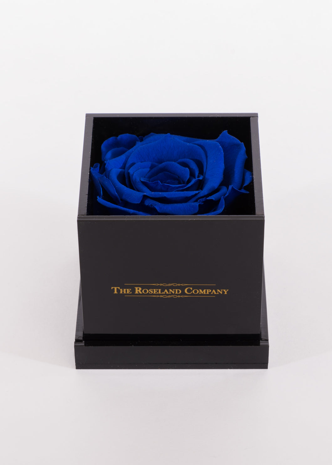 BLACK Small Cube Box with DARK BLUE Eternity Rose