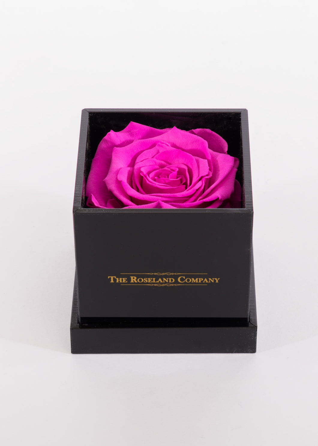BLACK Small Cube Box with DARK PINK Eternity Rose