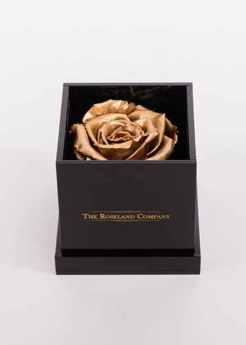BLACK Small Cube Box with GOLD Eternity Rose