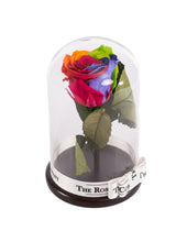 As seen in Beauty and the Beast: Eternity Rose, Under the Dome
