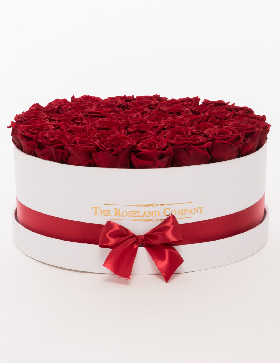 Eternity Roses, Huge Round Box