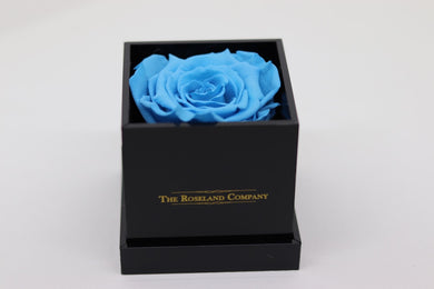 BLACK Small Cube Box with LIGHT BLUE Eternity Rose