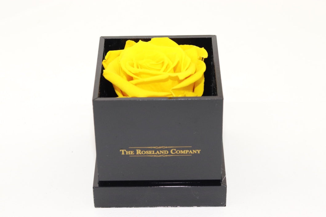 BLACK Small Cube Box with YELLOW Eternity Rose