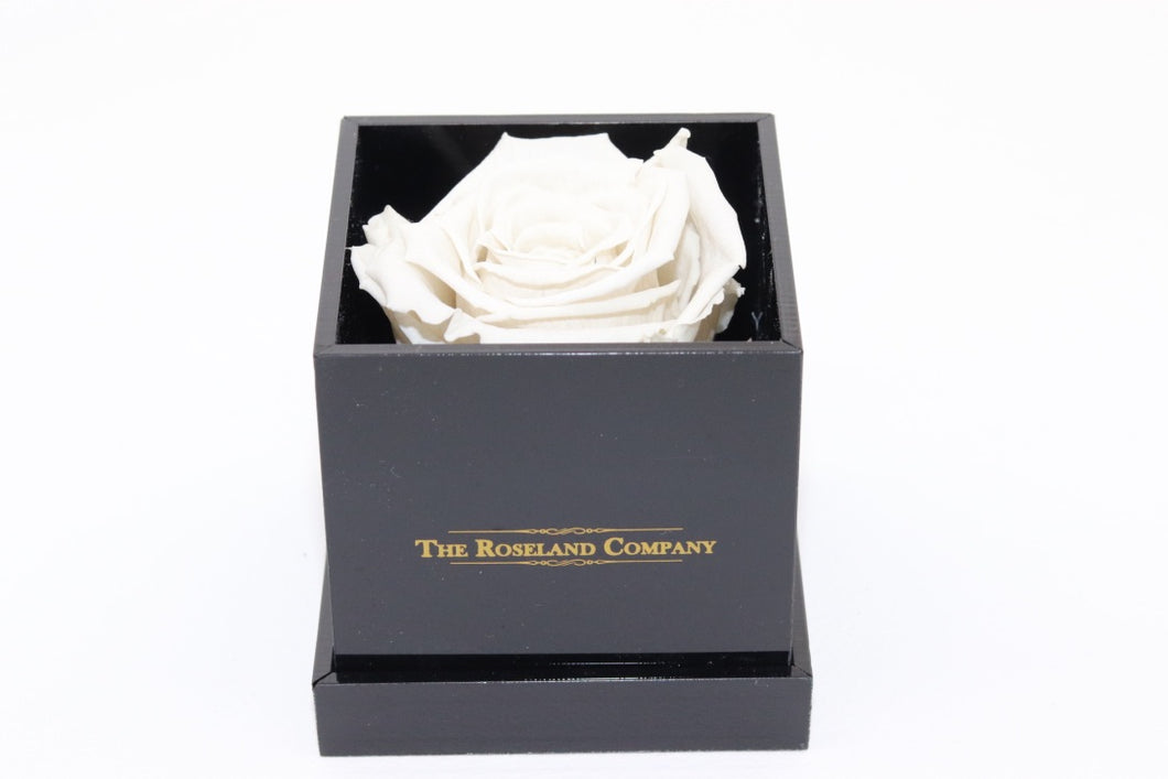 BLACK Small Cube Box with WHITE Eternity Rose
