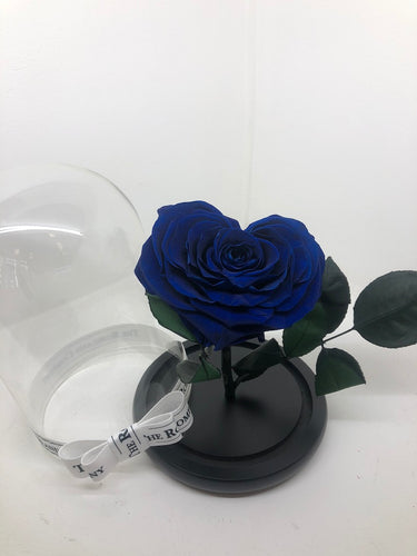 As seen in Beauty and the Beast: Heart Shape BLUE Eternity Rose, Under the Dome