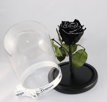 As seen in Beauty and the Beast: Black Glitter Eternity Rose, Under the Dome