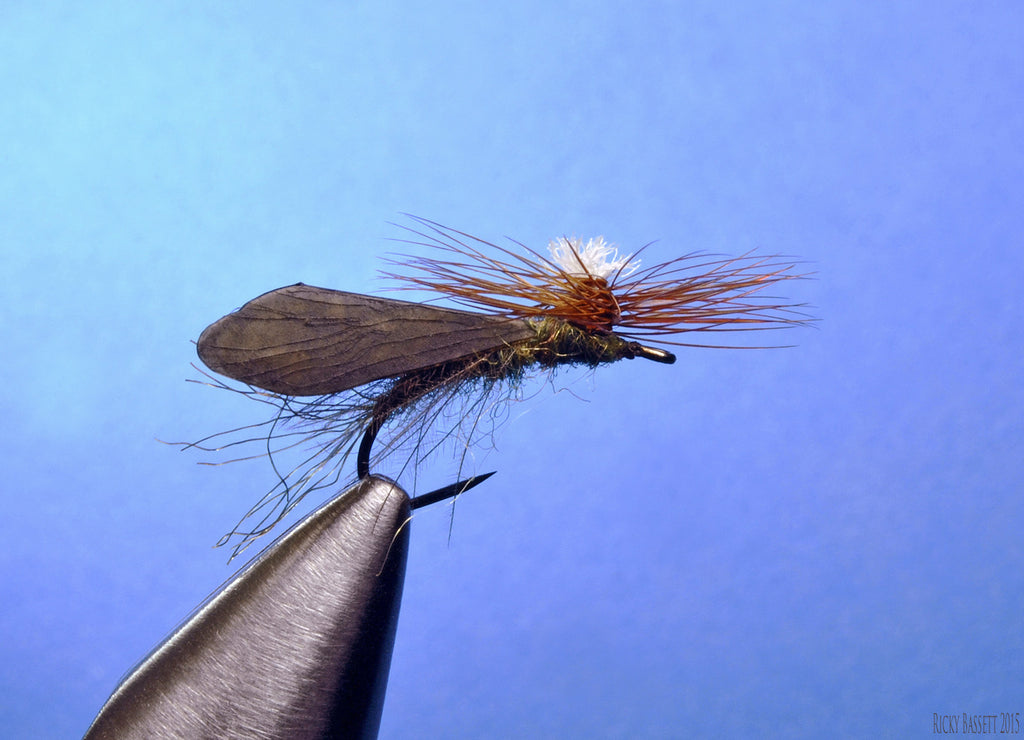 Reel Wings Parachute Caddis by Ricky Bassett