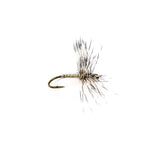 Cahill / White Fly Spinner Hackle Wing